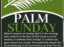 IMG-palm-sunday.jpg